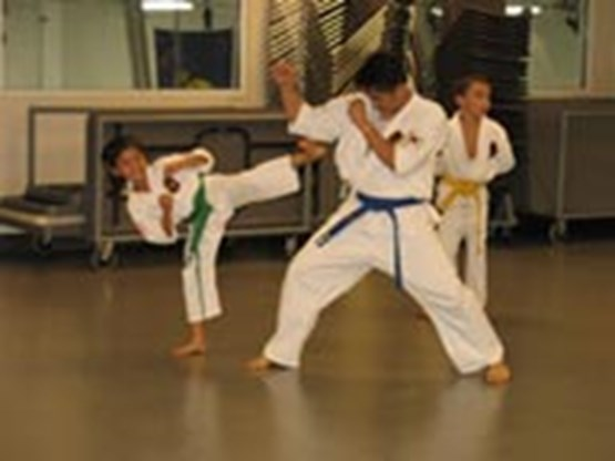 Teacher and student participating in Tae Kwon Do as another student watches in background